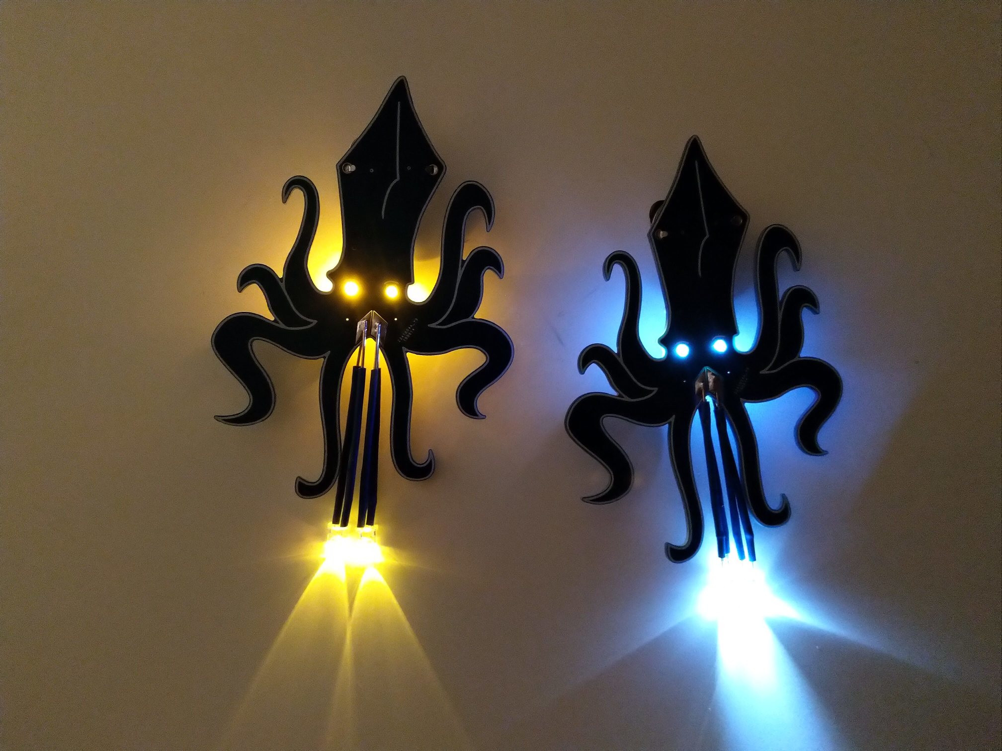 Shining squids in dark